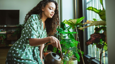 5 ways to spring clean your lifestyle